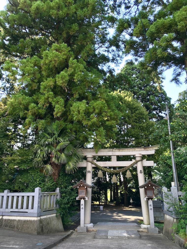20210805杉原神社_IMG_7589